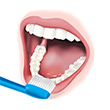 1. Point the bristles toward the gums